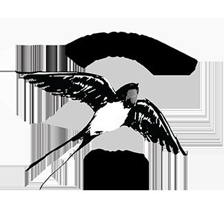 logo chás andorinha